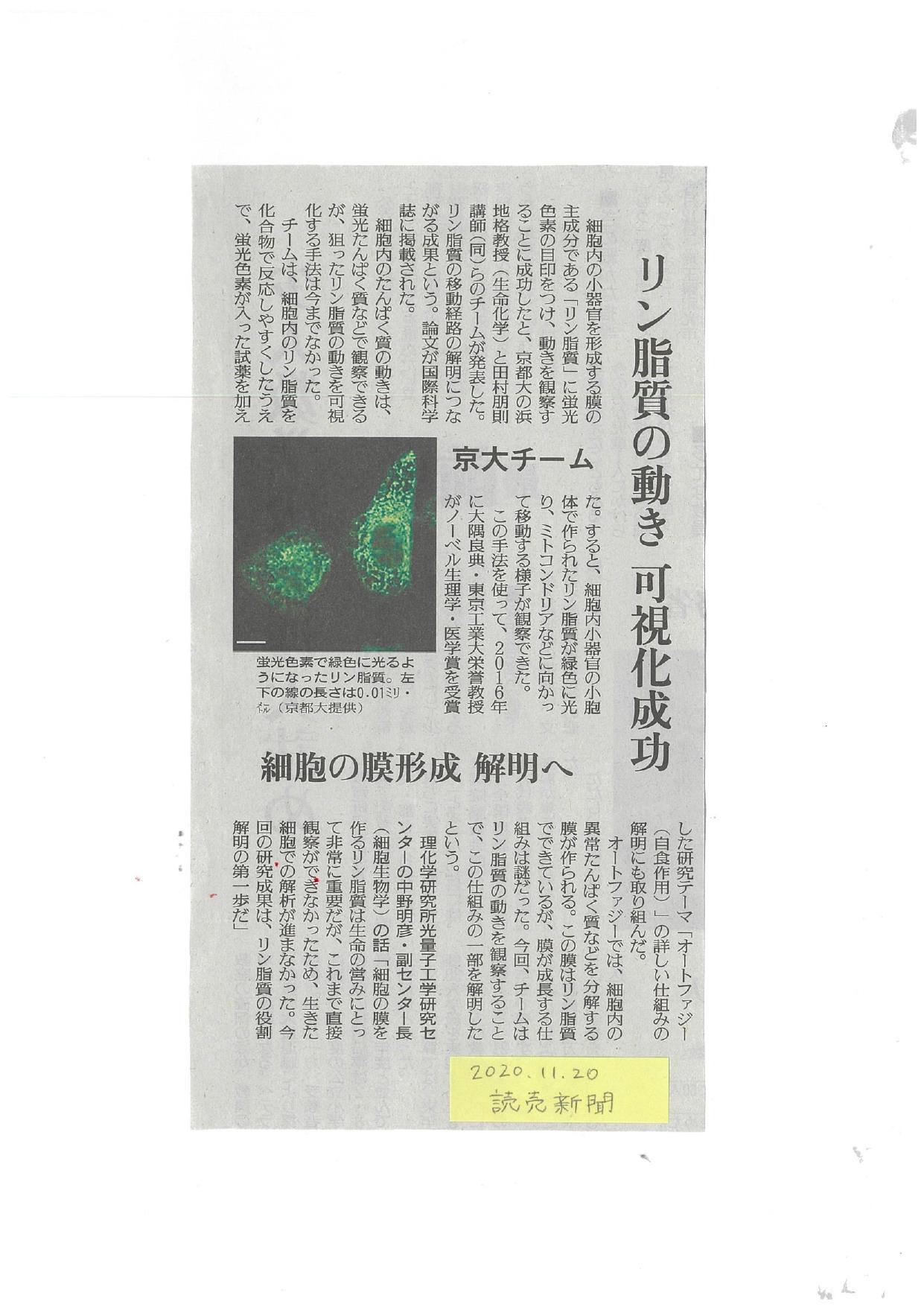 2020.11.20読売.jpg