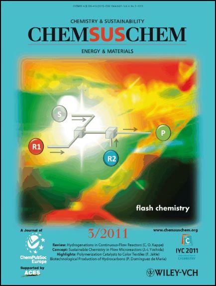 2011ChemSusChem_cover.jpg