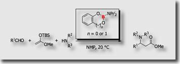 Mannich-type reaction80.jpg