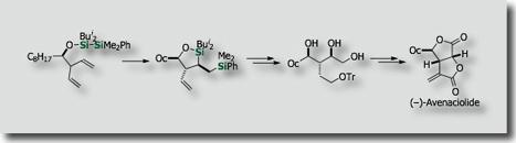 avenaciolide synthesis via bis-silylation80.jpg