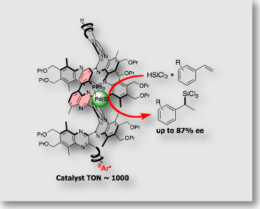 chiral polymer ligand.jpg