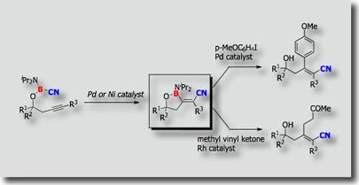 intramol. cyanoboration80.jpg